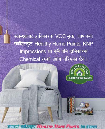 KNP Paints